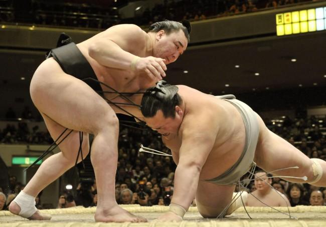 Judo vs Sumo (Video)