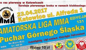 Komplet wyników ALMMA 131 Katowice.