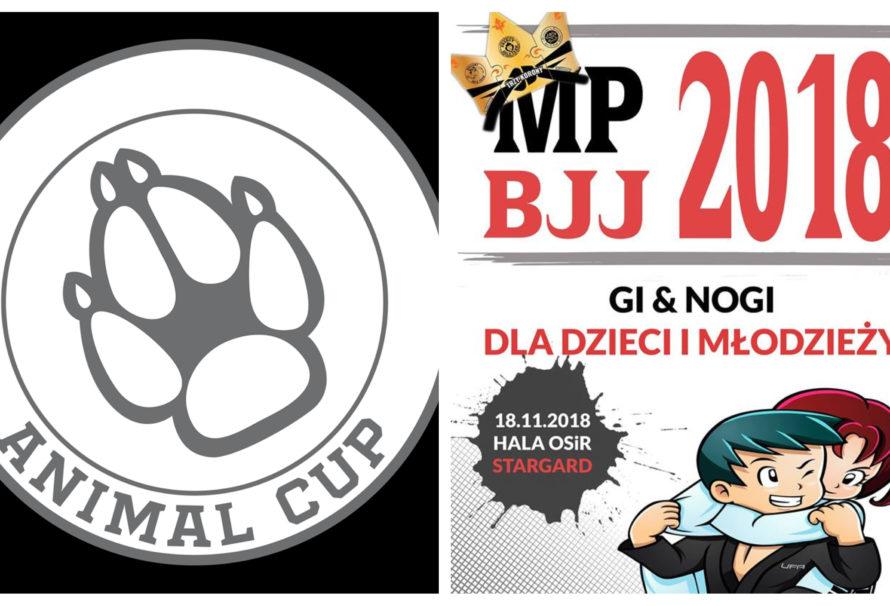 Mistrzostwa Polski Gi & NO-Gi dla dzieci i młodzieży oraz Animal Cup w Stargardzie