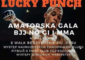 """I Amatorska Gala Brazylijskiego Jiu-jitsu """"Lucky Punch"""" odbyła się w Zdzieszowicach"""